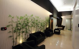Reception Lobby -2 copy